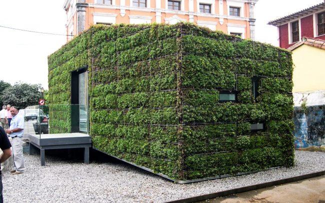 Fachada vegetal en oficina de información turística de Colombres Asturias obra de Dolmen Arquitectos